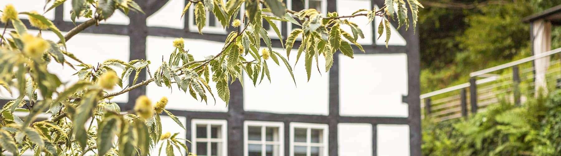 Senioren-WG: Eigene Wohnung, viel Gesellschaft und professionelle Versorgung.